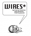 Intro Slide for WIRES*